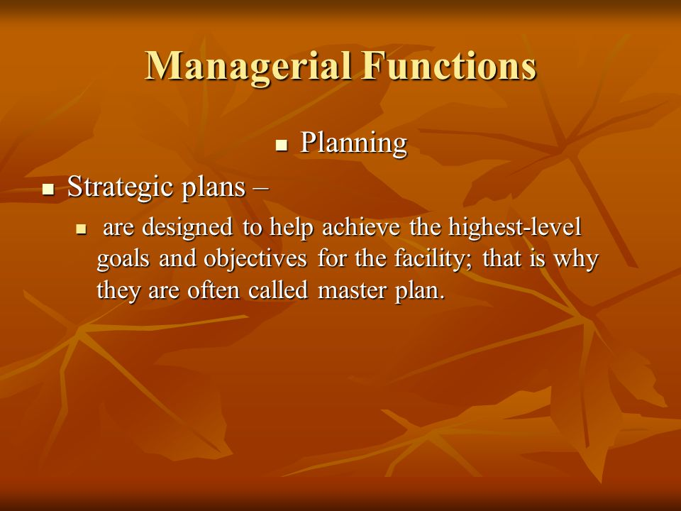 Managerial Functions Planning Strategic plans –