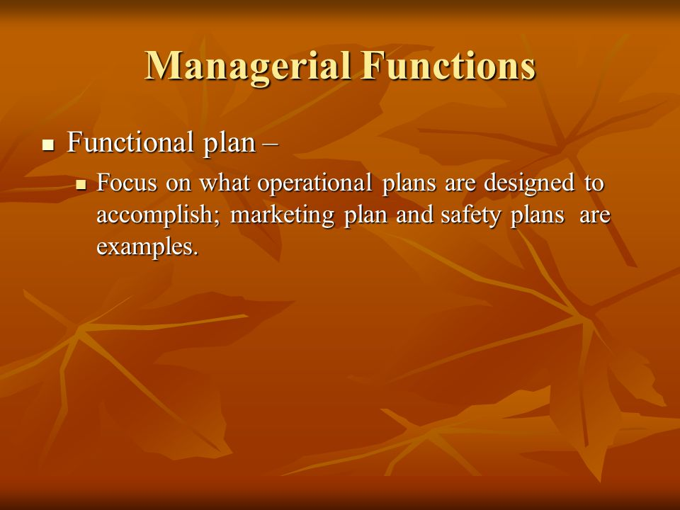 Managerial Functions Functional plan –