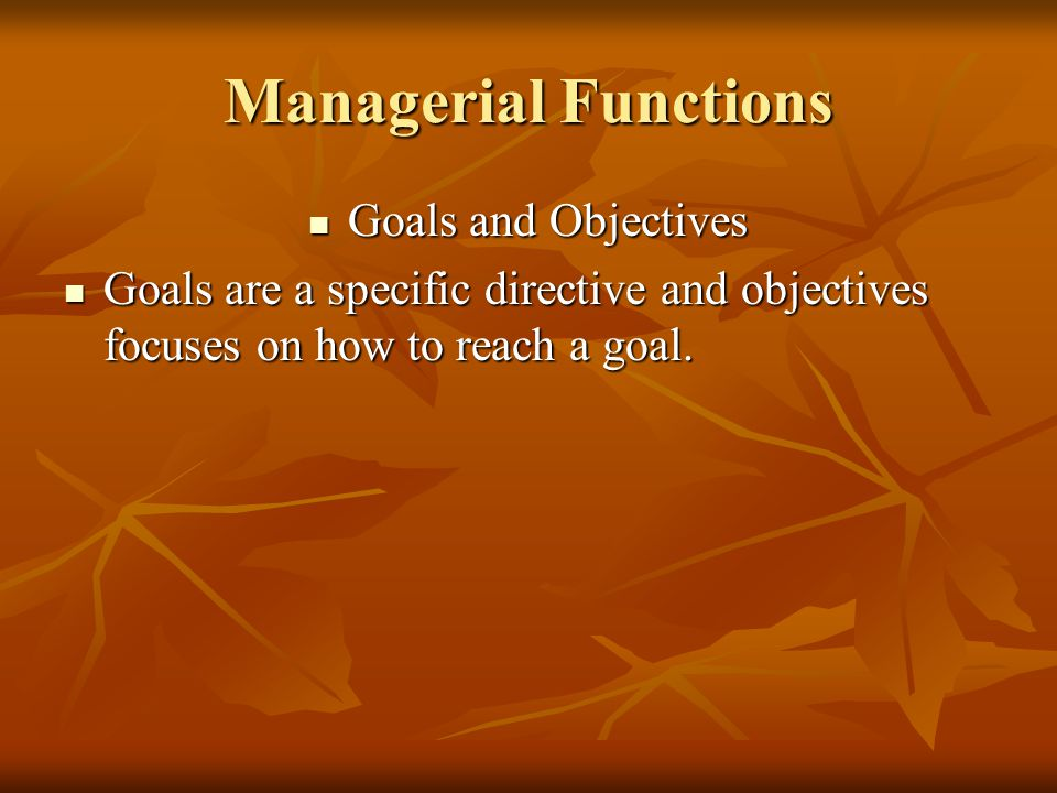 Managerial Functions Goals and Objectives