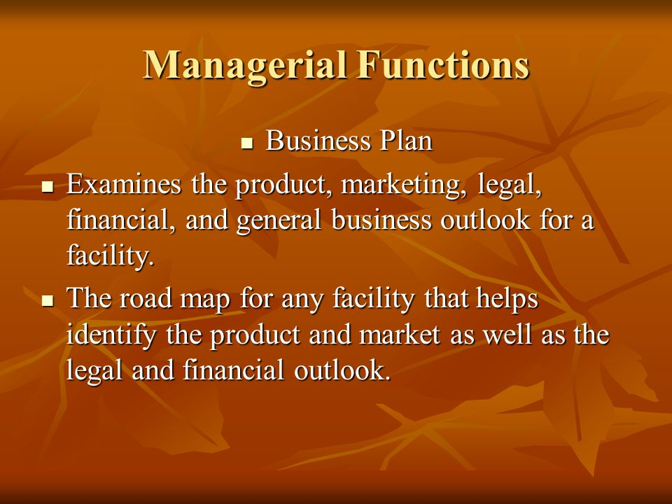 Managerial Functions Business Plan