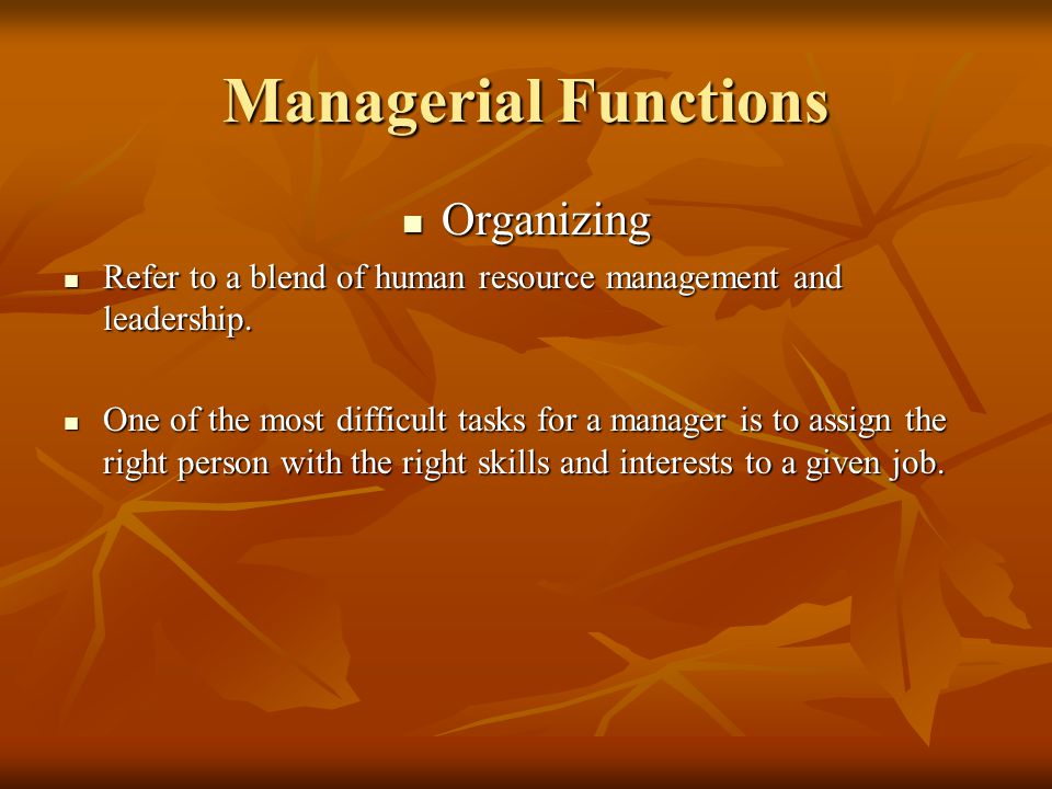 Managerial Functions Organizing