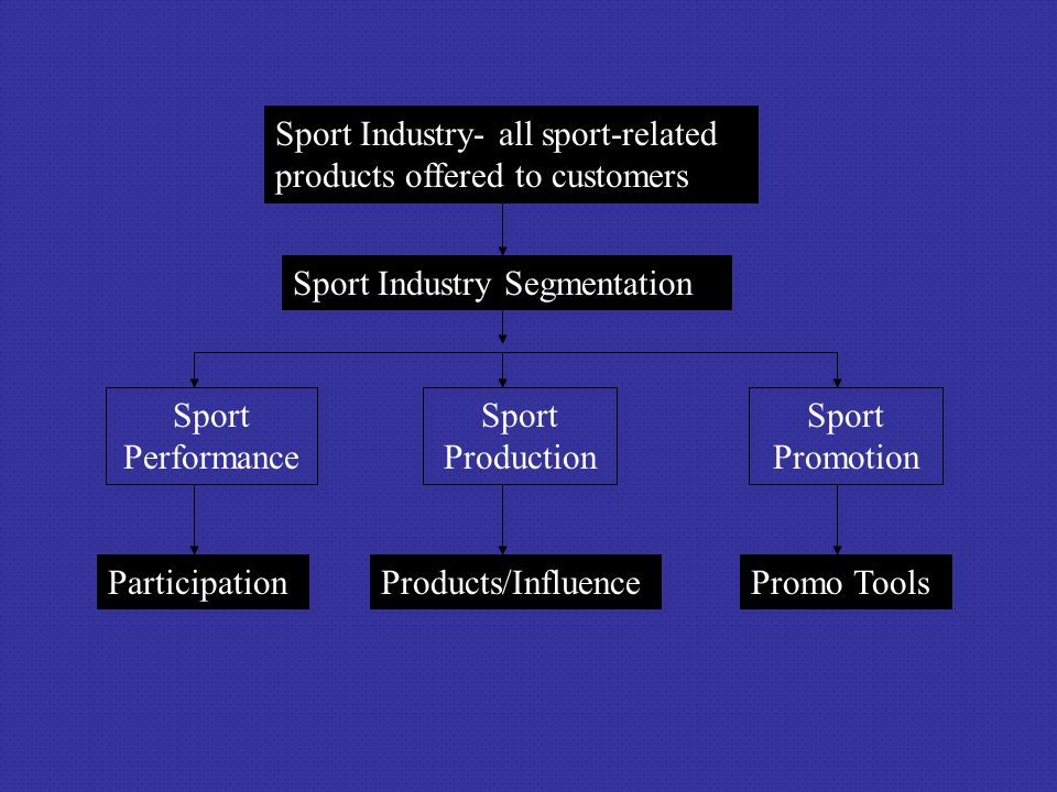 Sport Industry- all sport-related products offered to customers