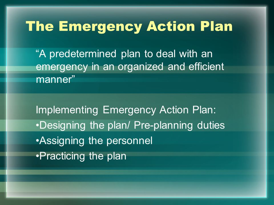 The Emergency Action Plan