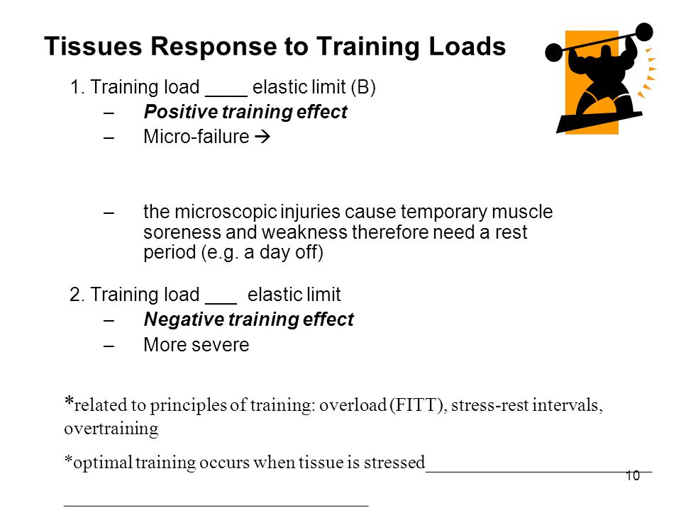 Tissues Response to Training Loads