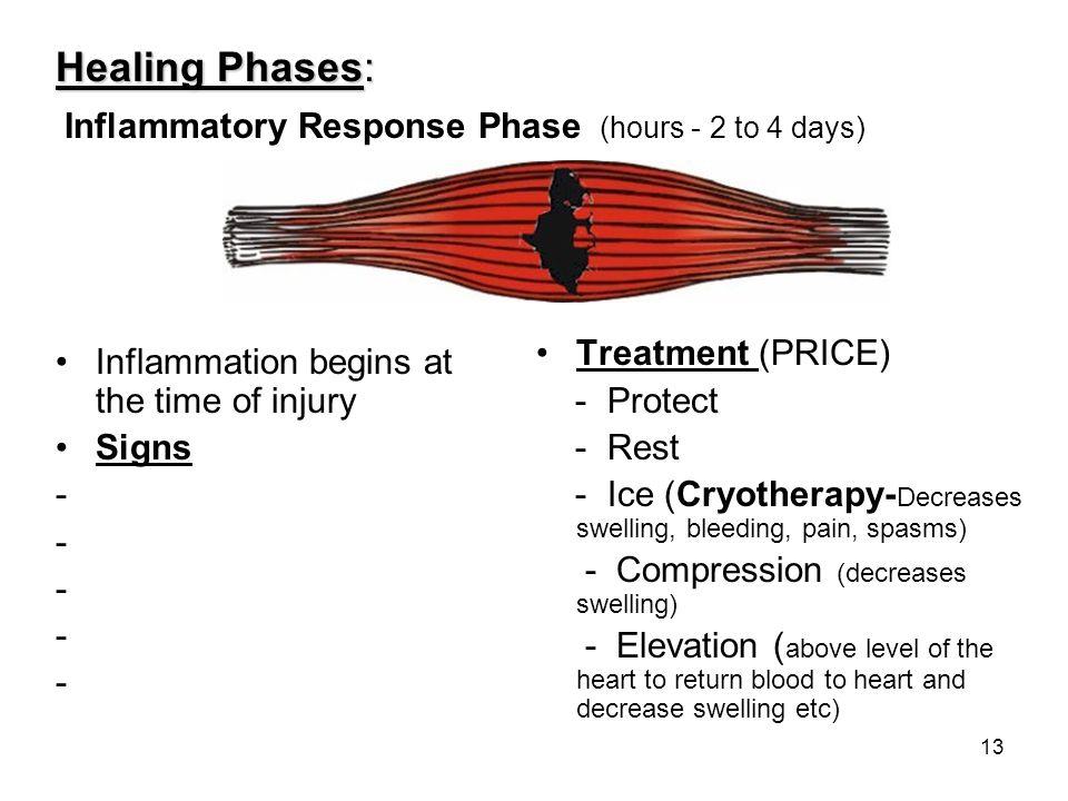 Inflammatory Response Phase (hours - 2 to 4 days)