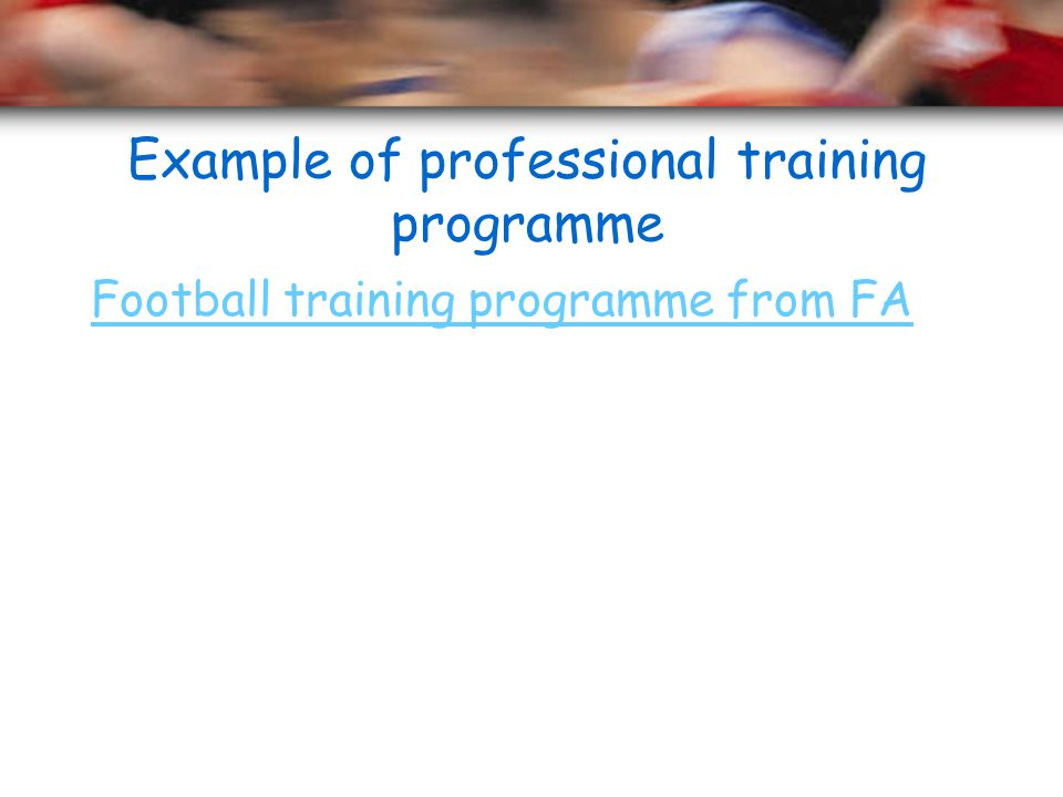 Example of professional training programme