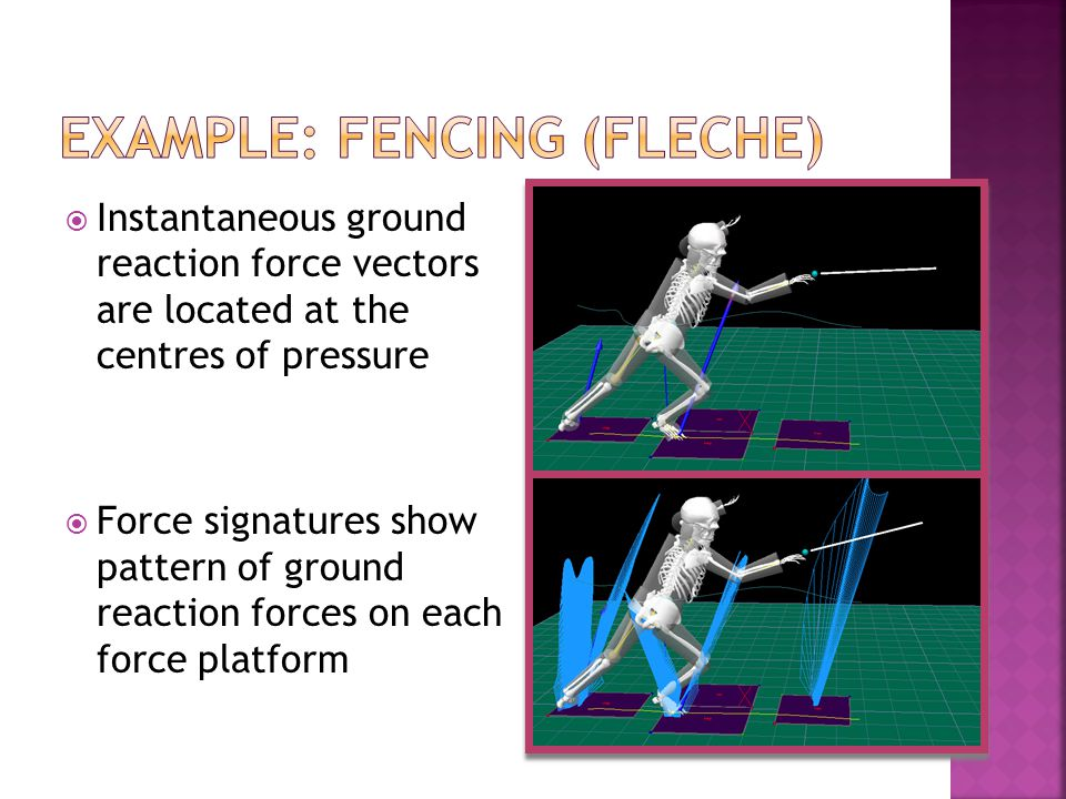 Example: fencing (fleche)