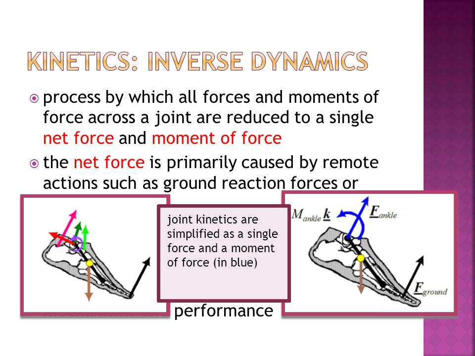 Kinetics: inverse dynamics