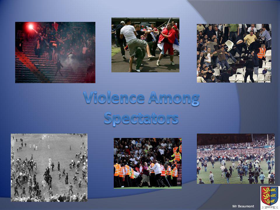 Violence Among Spectators