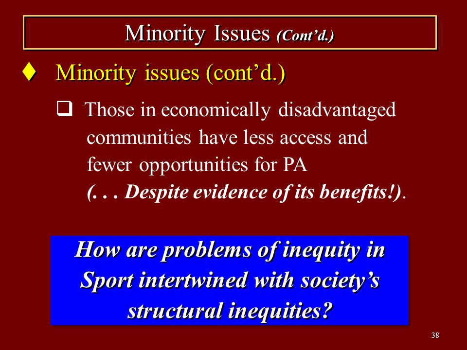 Minority Issues (Cont'd.)