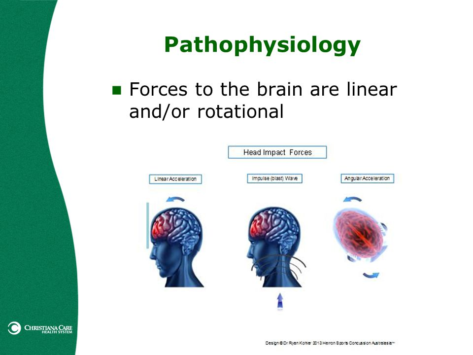 Pathophysiology Forces to the brain are linear and/or rotational