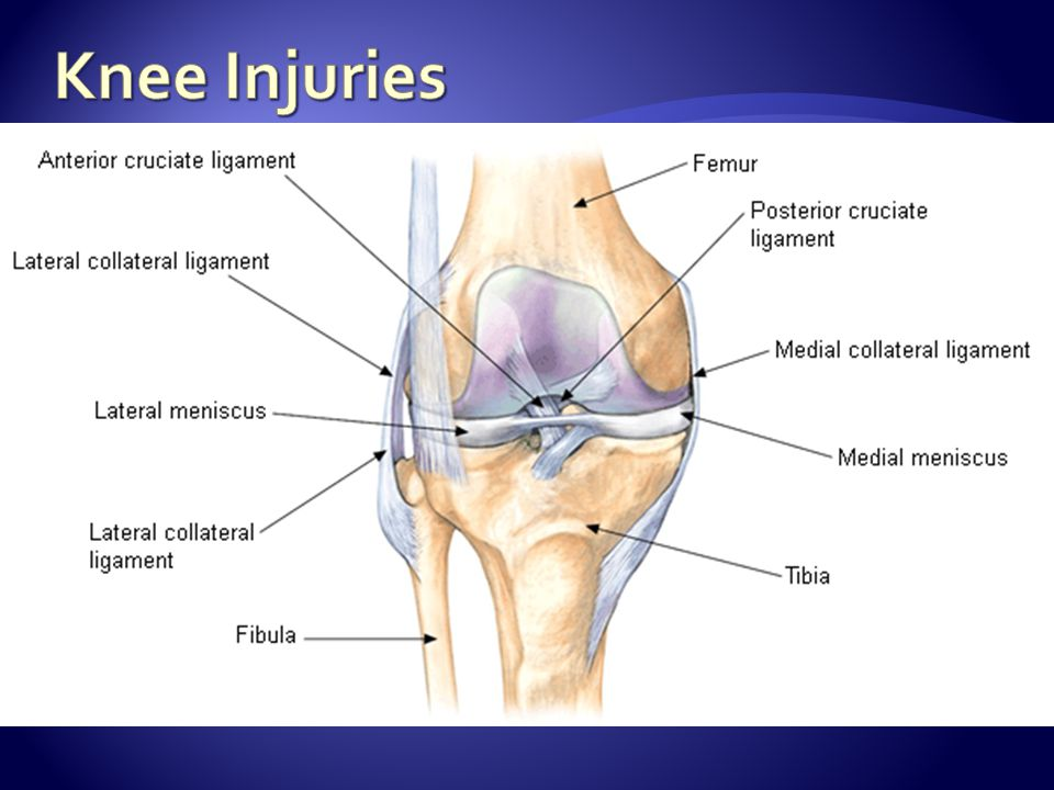 Knee Injuries Pediatric and adolescent athletes who have sustained knee injuries often present initially to their primary care doctor.