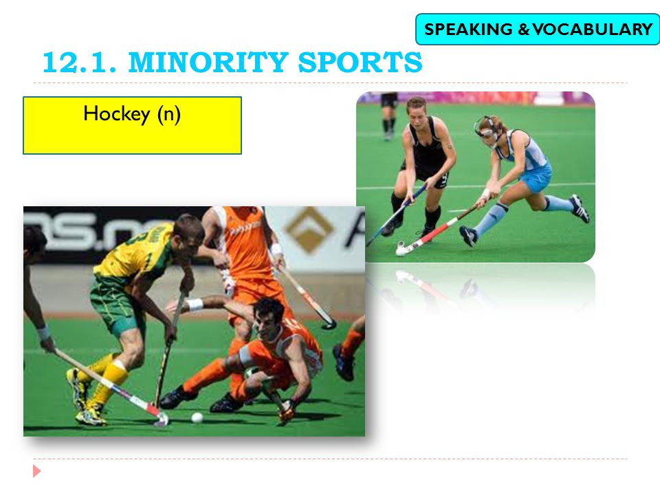 12.1. MINORITY SPORTS SPEAKING & VOCABULARY Hockey (n)