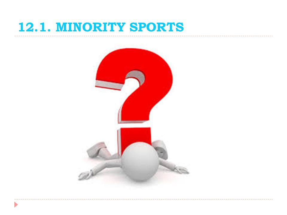 12.1. MINORITY SPORTS
