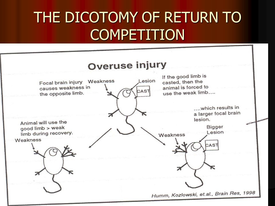 THE DICOTOMY OF RETURN TO COMPETITION