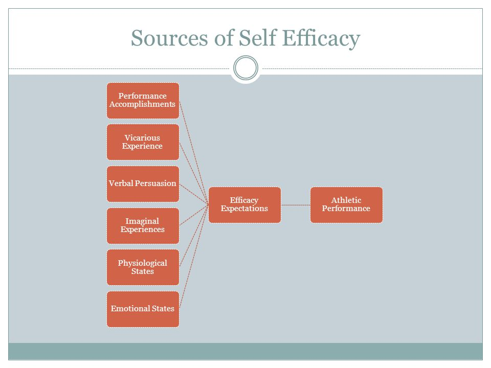 Sources of Self Efficacy