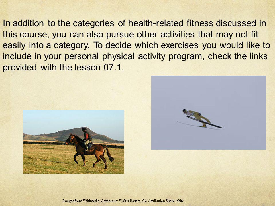 In addition to the categories of health-related fitness discussed in this course, you can also pursue other activities that may not fit easily into a category. To decide which exercises you would like to include in your personal physical activity program, check the links provided with the lesson 07.1.