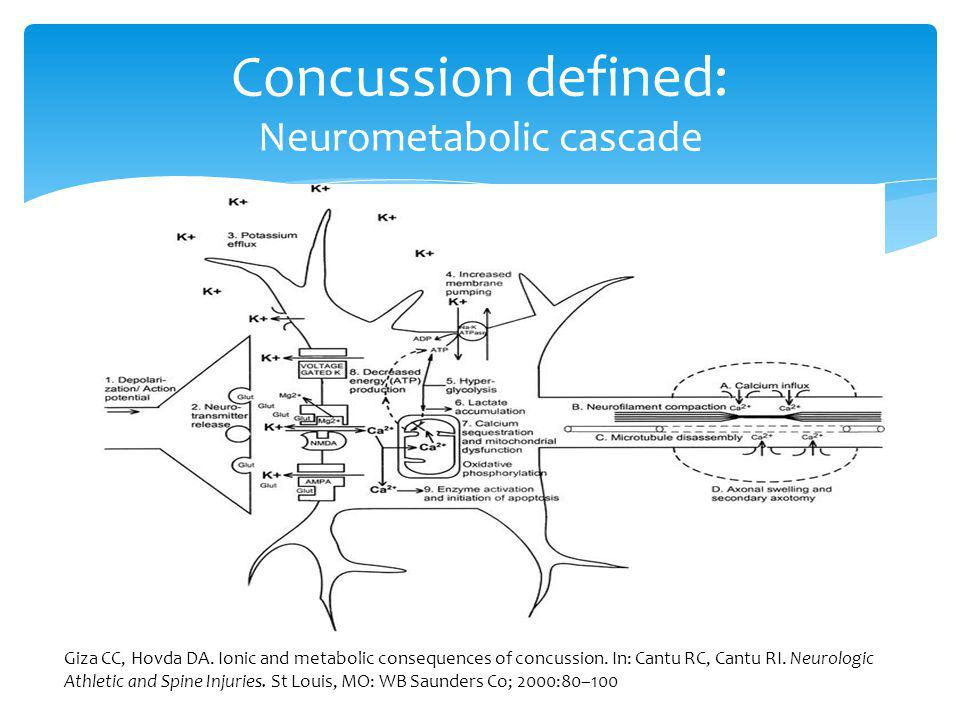 Concussion defined: common features