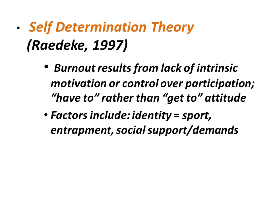 Self Determination Theory (Raedeke, 1997)