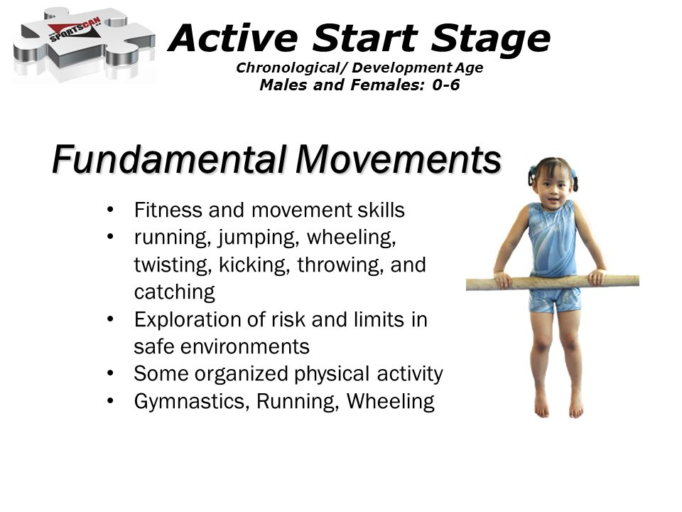 Fundamental Movements