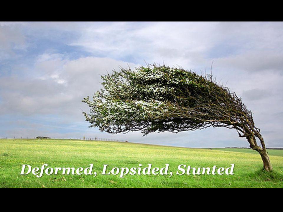 Deformed, Lopsided, Stunted