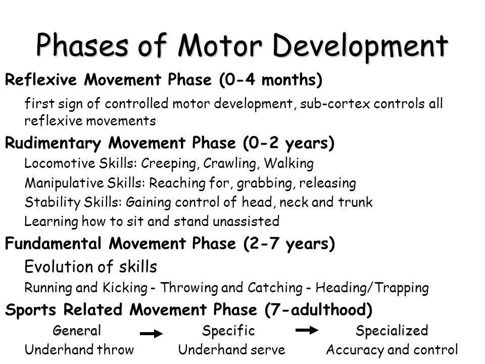 Phases of Motor Development