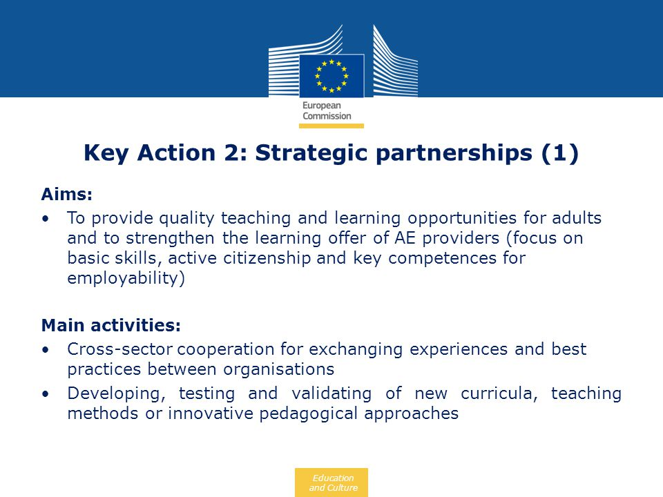Key Action 2: Strategic partnerships (1)