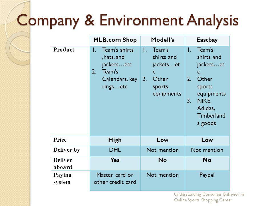 Company & Environment Analysis
