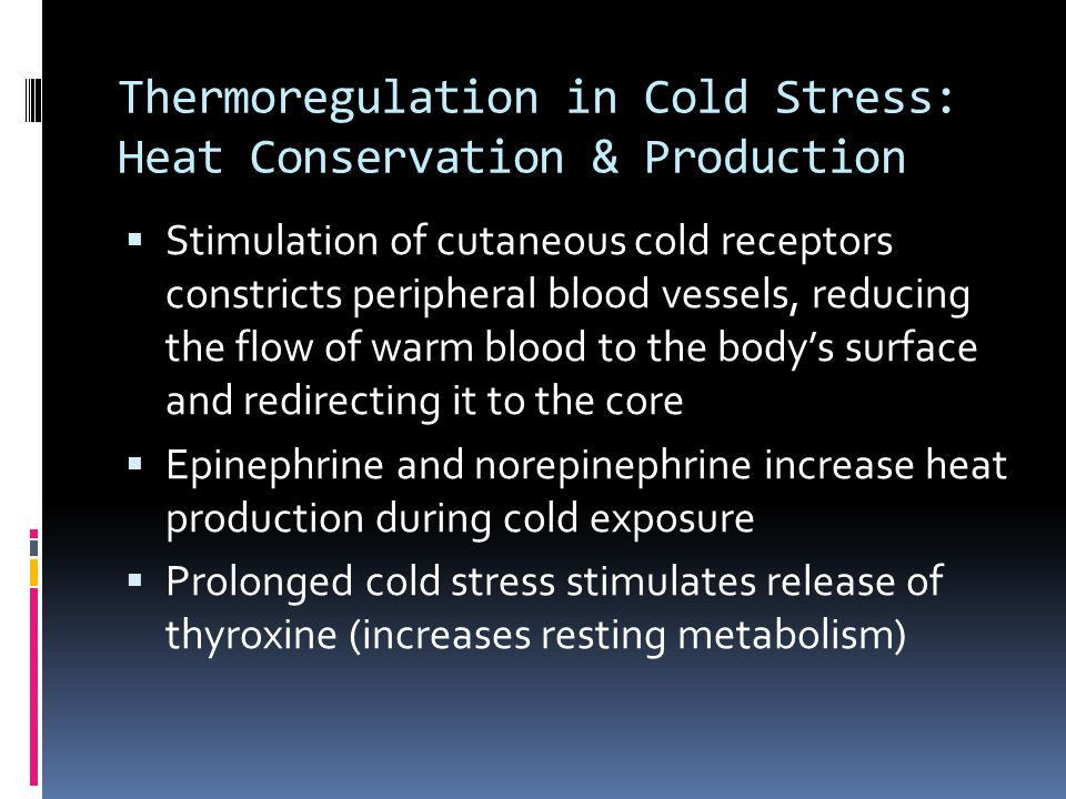 Thermoregulation in Cold Stress: Heat Conservation & Production
