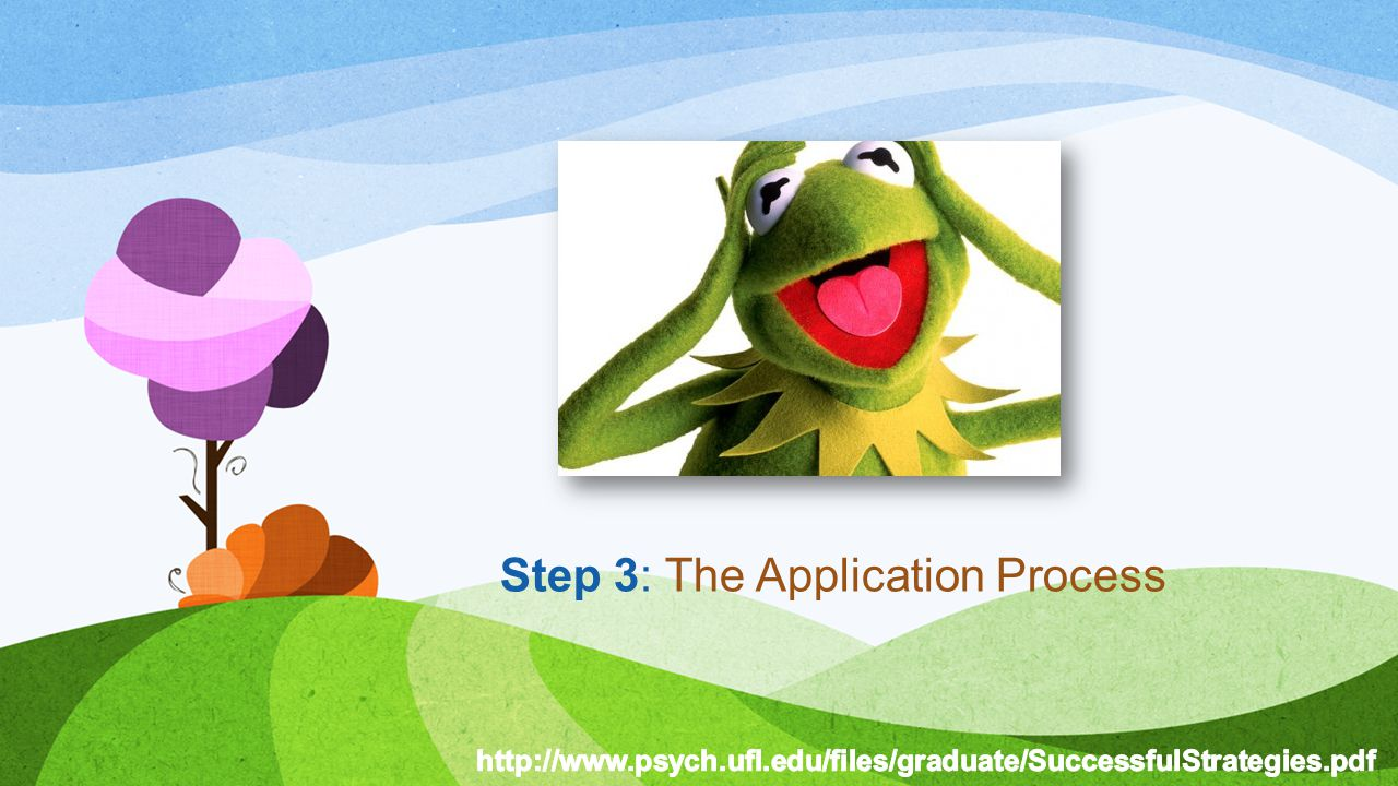 Step 3: The Application Process