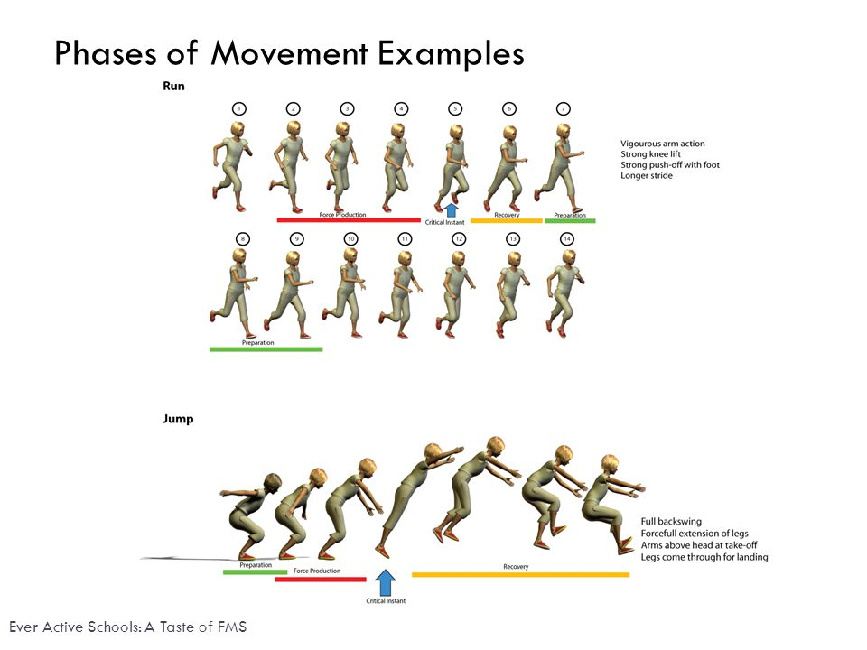 Phases of Movement Examples