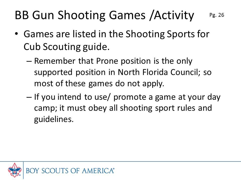 BB Gun Shooting Games /Activity