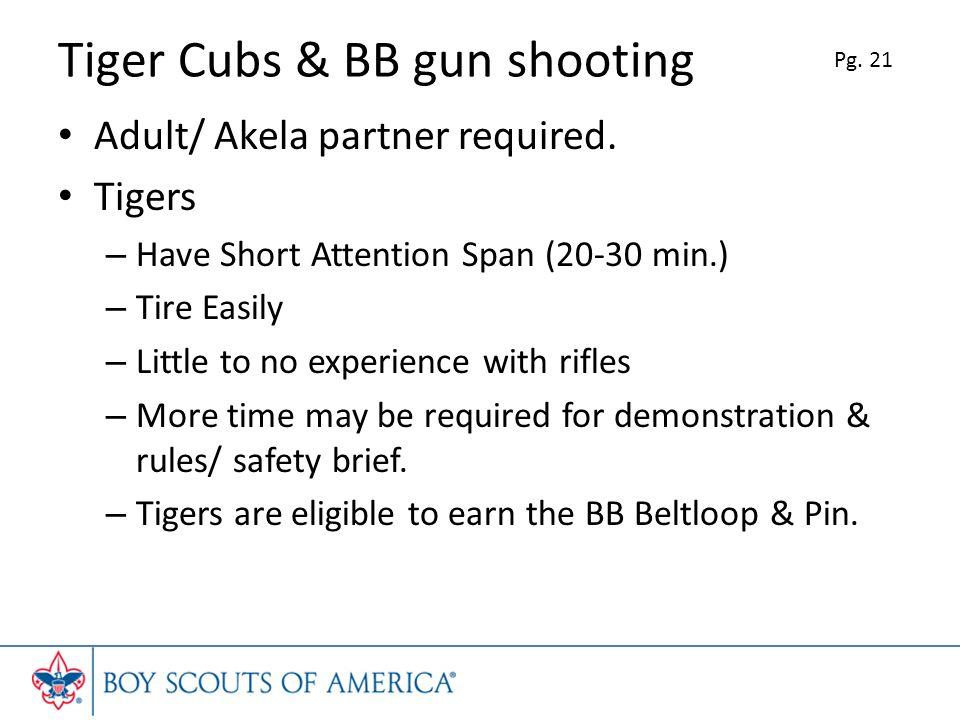 Tiger Cubs & BB gun shooting