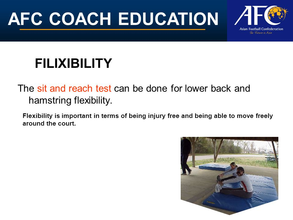 FILIXIBILITY The sit and reach test can be done for lower back and hamstring flexibility.