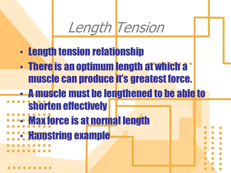 Length Tension Length tension relationship