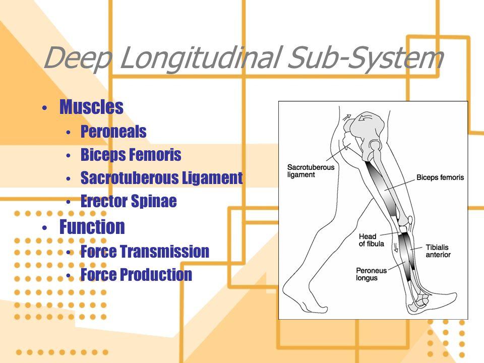 Deep Longitudinal Sub-System