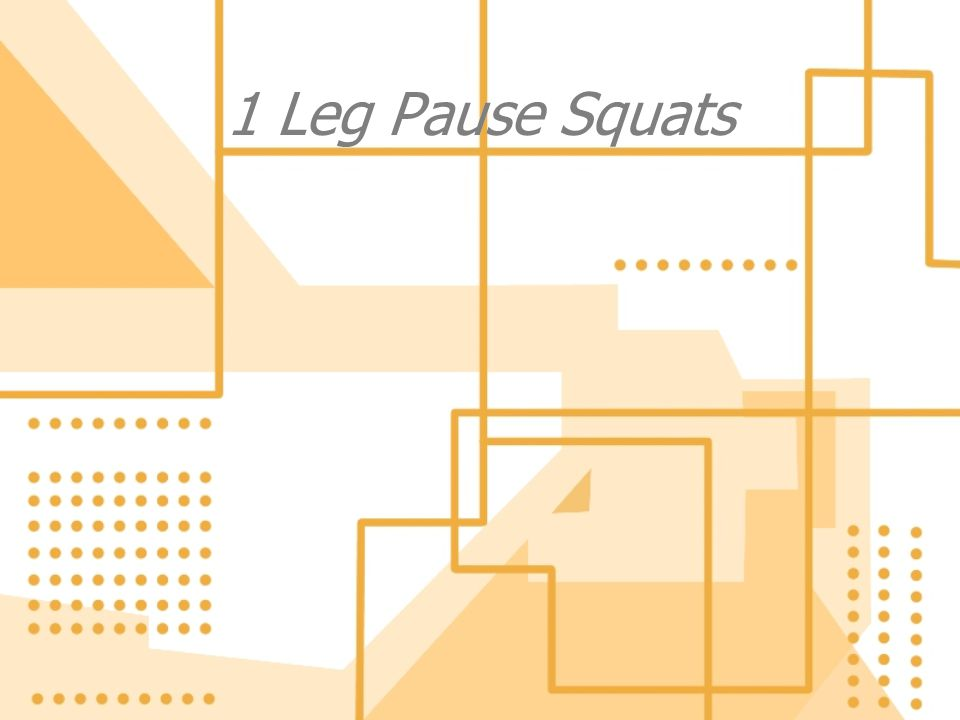 1 Leg Pause Squats