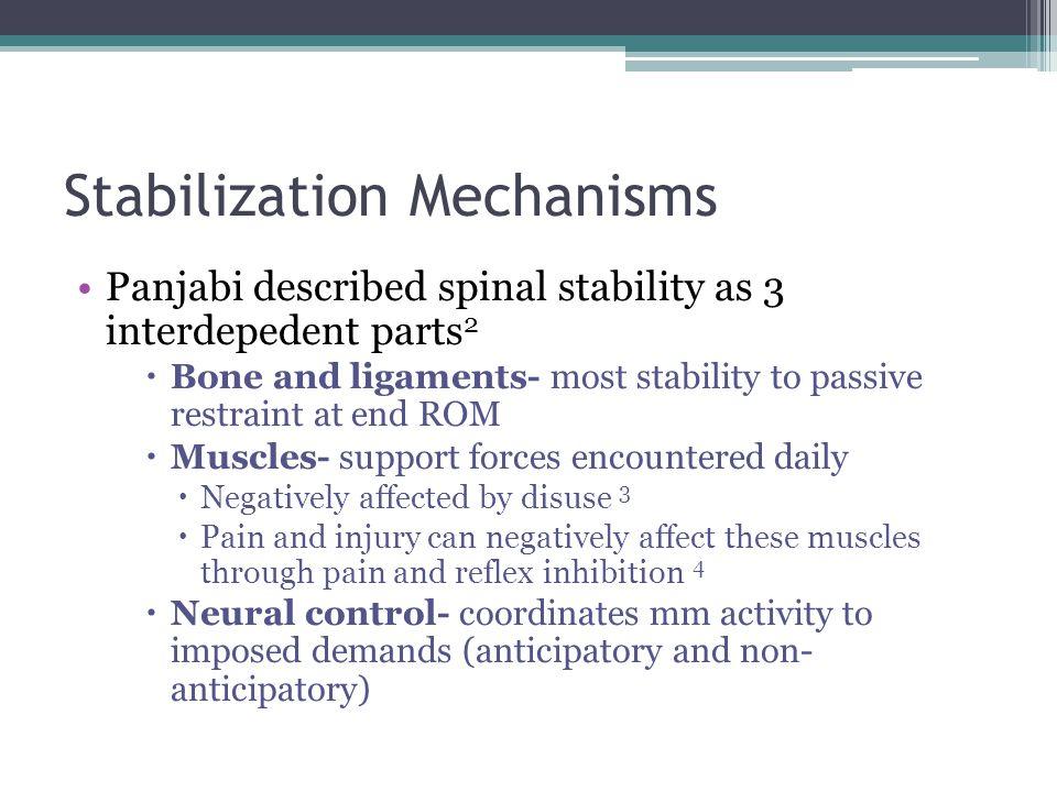 Stabilization Mechanisms