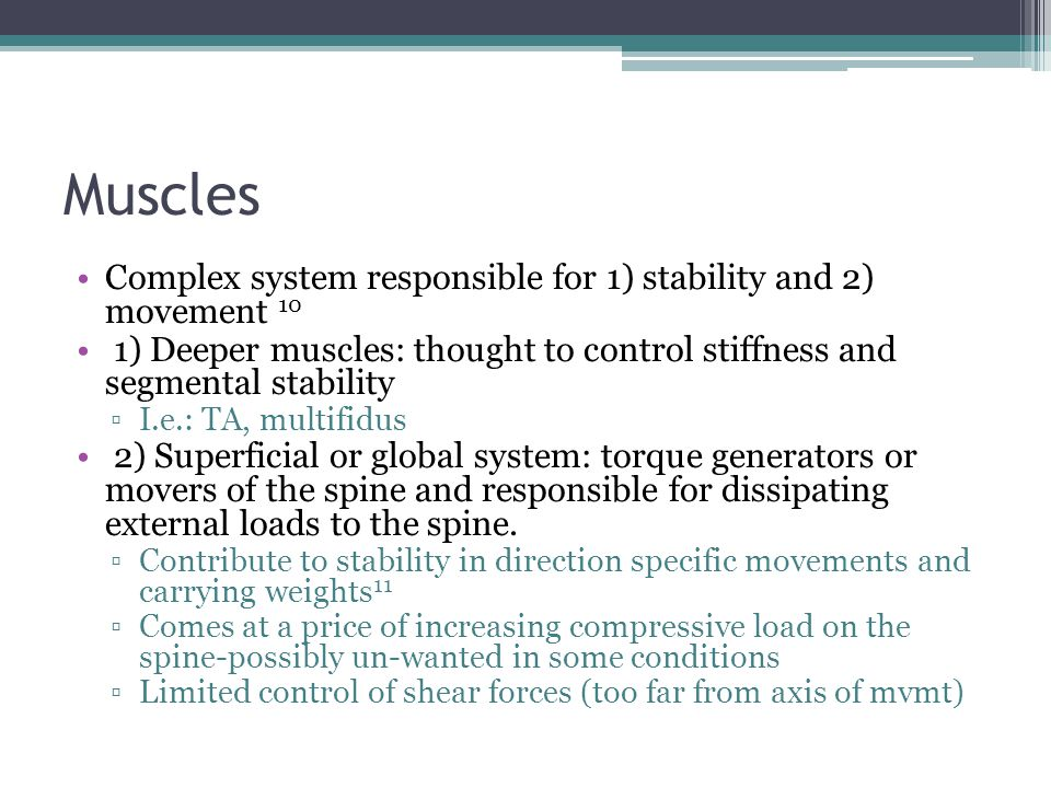 Muscles Complex system responsible for 1) stability and 2) movement 10