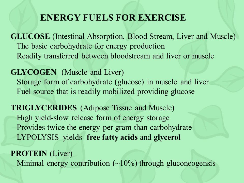 ENERGY FUELS FOR EXERCISE