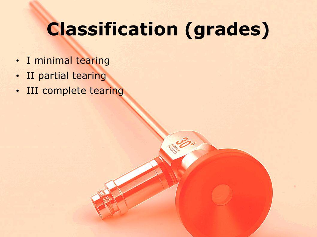 Classification (grades)