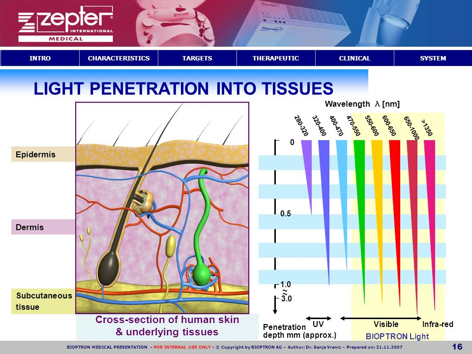 LIGHT PENETRATION INTO TISSUES