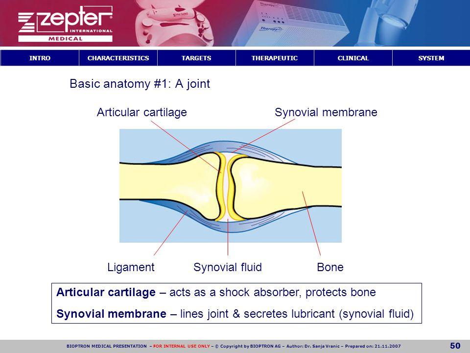 Basic anatomy #1: A joint