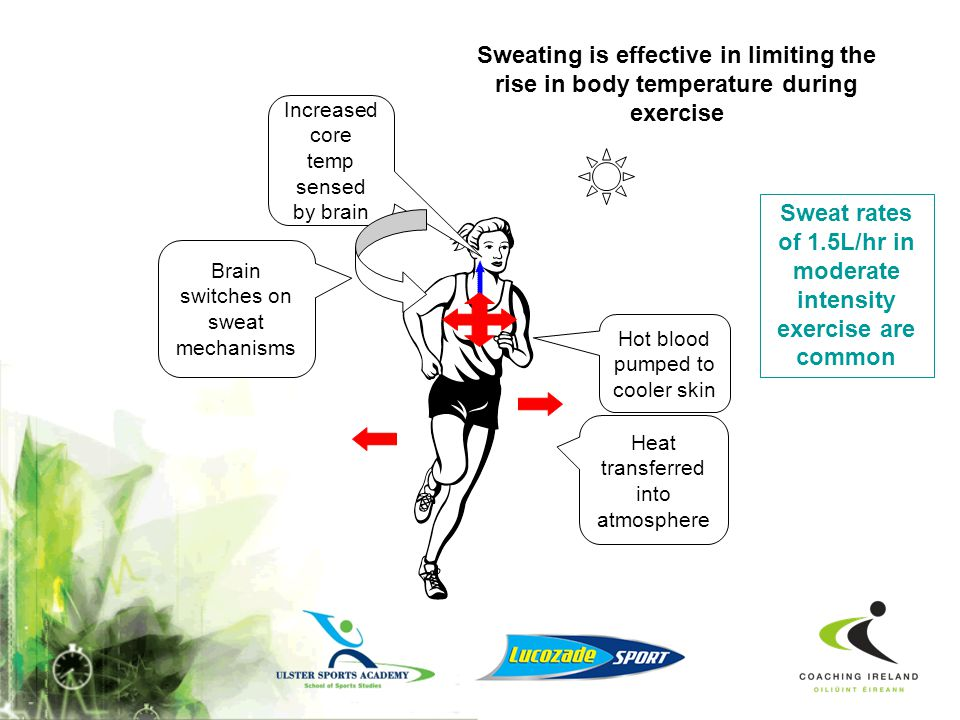 Sweat rates of 1.5L/hr in moderate intensity exercise are common