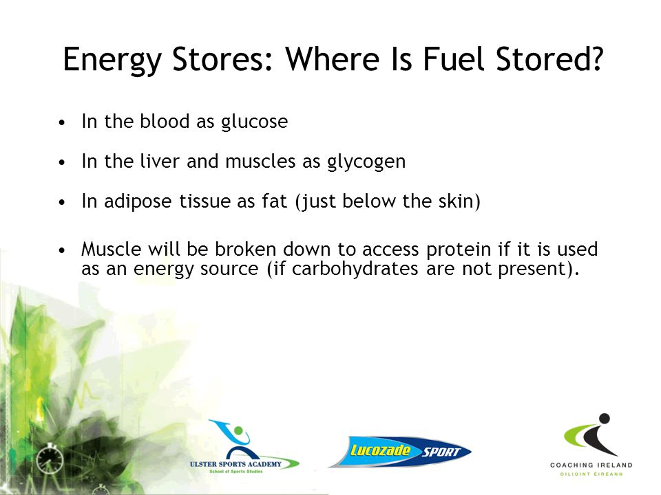Energy Stores: Where Is Fuel Stored