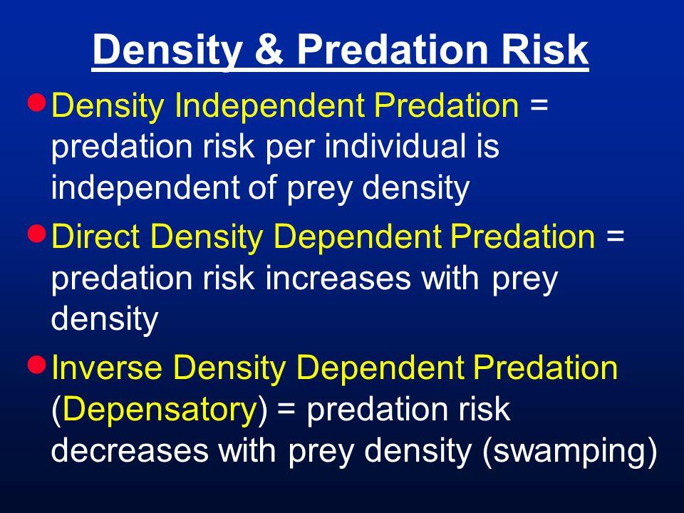 Density & Predation Risk