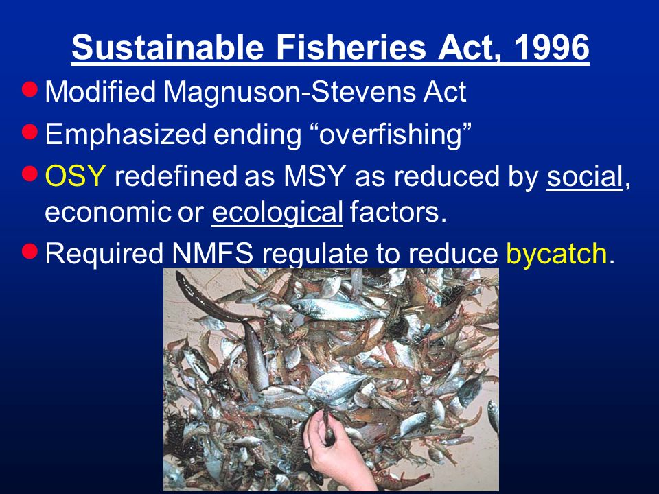 Sustainable Fisheries Act, 1996