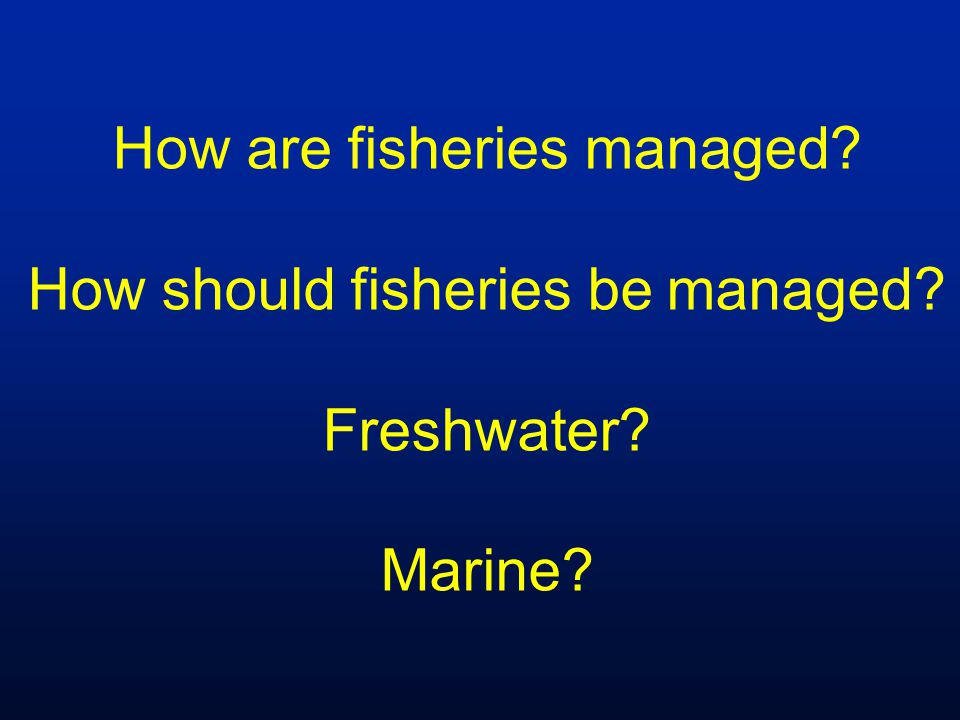 How are fisheries managed How should fisheries be managed