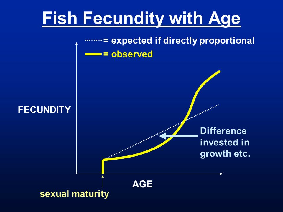 Fish Fecundity with Age