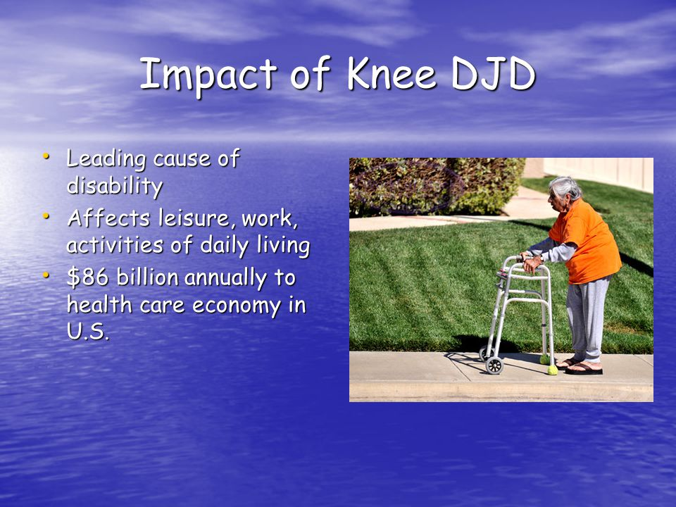 Impact of Knee DJD Leading cause of disability